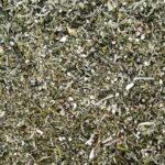 Kompolti Bud CBD Biomass