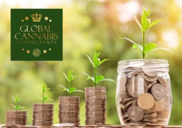 Global Cannabis Consultants   Finance and Investment