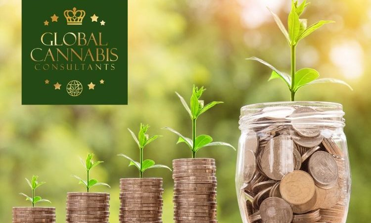 Global Cannabis Consultants | Finance and Investment