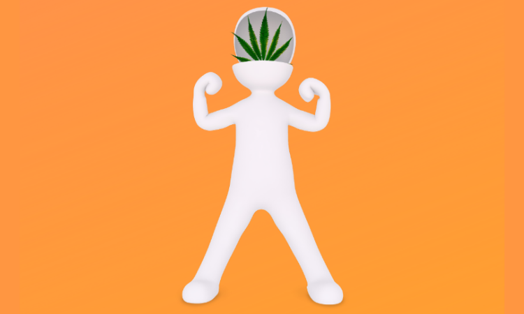 Children and Medical Cannabis