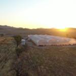 Atman Organics CBD farm Spain