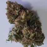 Tiborszallasi sungrown CBD Flowers CBD 11%   THC 0.4%