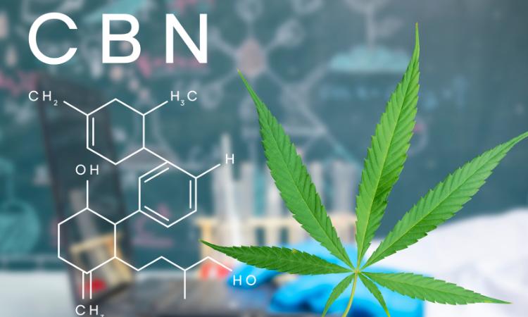 CBN - A natural painkiller and sleep aid