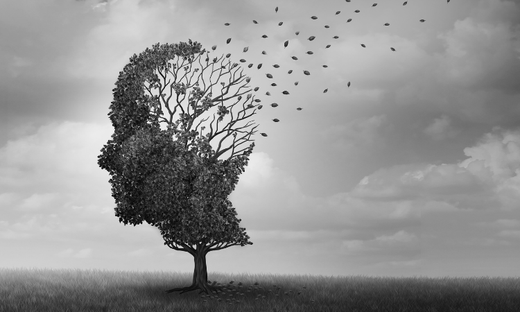 How cannabis can help with neurodegenerative diseases such as Alzheimer's, Parkinson's and ALS.