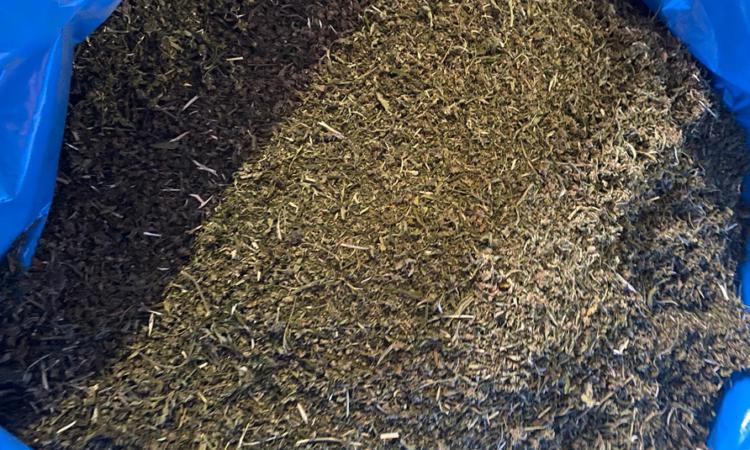 CBD Biomass V CBD 4-5% Italy