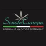 green love logo cantopia