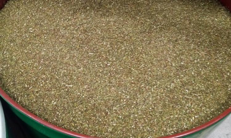 cbd hemp biomass_gacp and gap greece